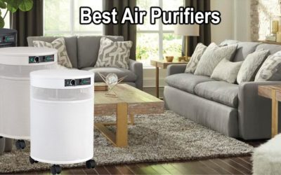 Best Room Air Purifiers For Dust And Allergy Control